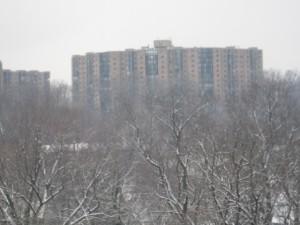 09_1st-snow-0041