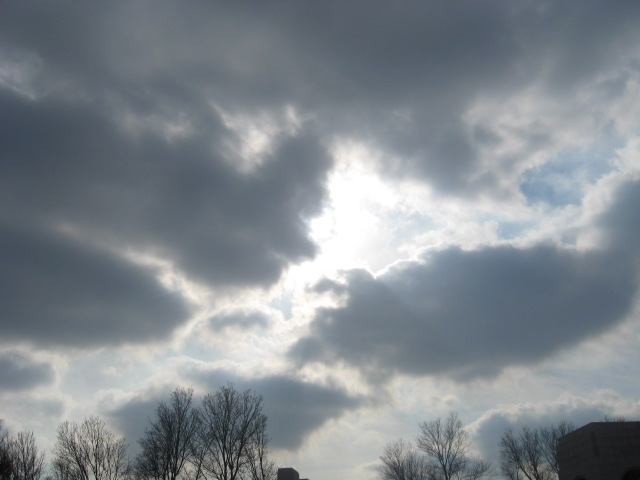 winter08_09-014