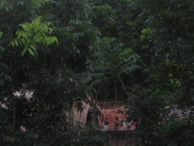 Bangladesh 381