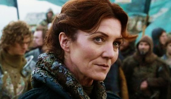 Michelle Fairley as Catalyn Stark
