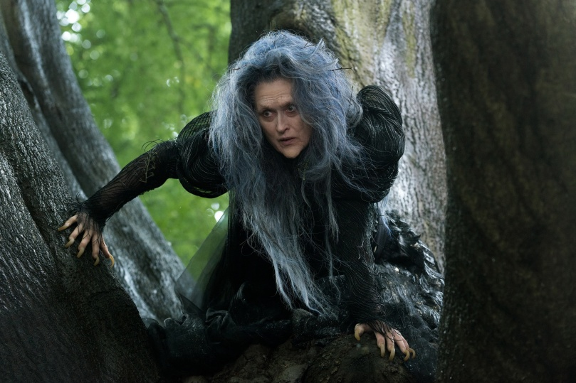 The Witch (Meryl Streep) wishes to reverse a curse to restore her beauty.